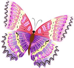 vlinder madelief